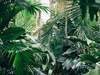 Indoor Gruenanlage