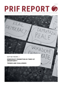 Download: Democracy Promotion in Times of Uncertainty